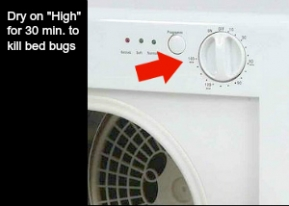 kill bed bugs on the hottest possible settings