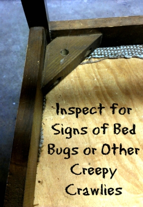 Step One - Inspect for Bed Bugs