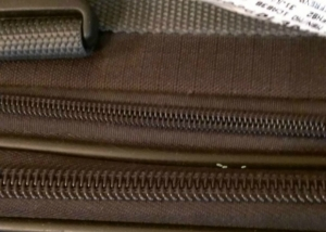 Bed Bug Eggs on Luggage Zipper (c) Thrasherbedbugs