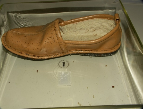 Bed Bug Fecal Spots on Slipper, Photo (cc nd) louento.pix