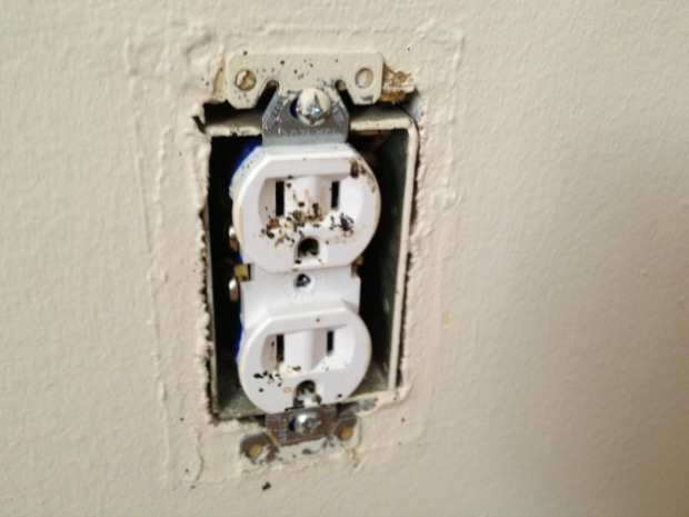 Bed Bugs And Spotting On Electrical Outlet Photo Cc