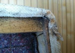 Box Spring with Dust Cover Removed to Show Bed Bug Fecal Spotting, Photo (c) Thrasher Termite & Pest Control, Inc.