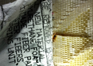 Bed Bugs on Mattress, Photo (c) Thrasher Termite & Pest Control, Inc.