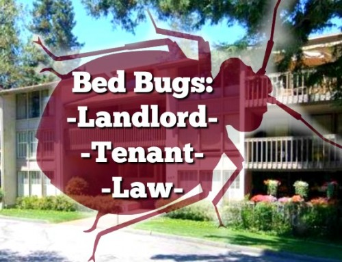 Important Bed Bug Law for California Landlords and Tenants
